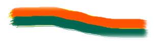 cintura-arancio-verde